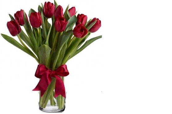 10 tulips in a vase $48.00